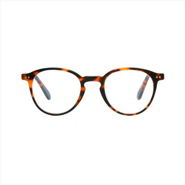 Grosetto Brown Turtle Læsebrille - PREMIUM