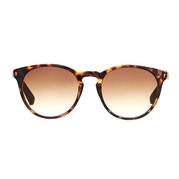 Torino Brown Solbrille - CLASSIC